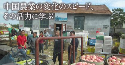 中国農業の変化のスピード、その活力に学ぶ – 中国各地での農村調査を通して、中国農業の構造問題を実践的に理解する。-