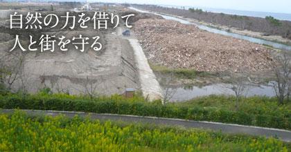 自然の力を借りて人と街を守る – 津波に強い緑地は作れるか、災害廃棄物を利用した緑化は可能か –