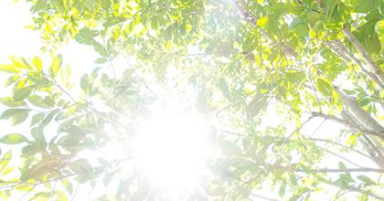 自然エネルギーの開発に新たな視点の導入