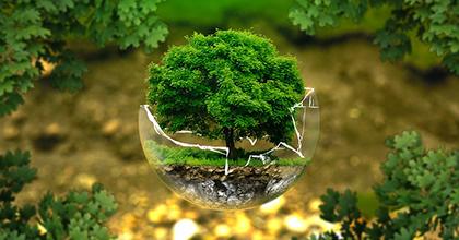 環境保全は企業に利益をもたらす ―求められるエコ・テクノストラクチャーとエコ・プロシューマ―