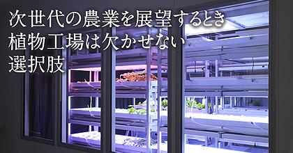 次世代の農業を展望するとき植物工場は欠かせない選択肢 – 栽培環境や栽培方法を研究し、より効率的な植物工場の構築をめざしています –