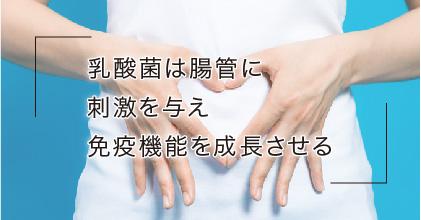 #5 乳酸菌は人の免疫力を高める?