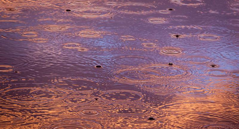 集中豪雨を防ぐためには、法整備が必要!?