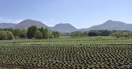 土壌は資源であり、持続的な活用のためには知恵が必要