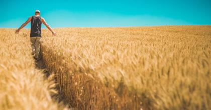 エビデンスに基づく取り組みは、自然相手の農業にも重要